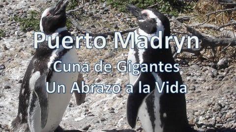 Puerto Madryn, Chubut, Argentina