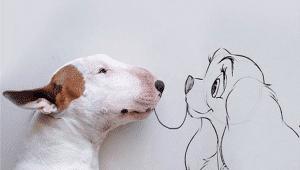 Calendario Maya Onda Encantada del Perro